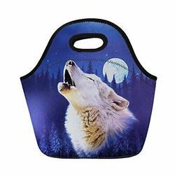 Bigcardesigns Animal Wolf Lunch Bag for Boys Girls School In