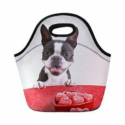 lovely boston terrier lunch tote bag